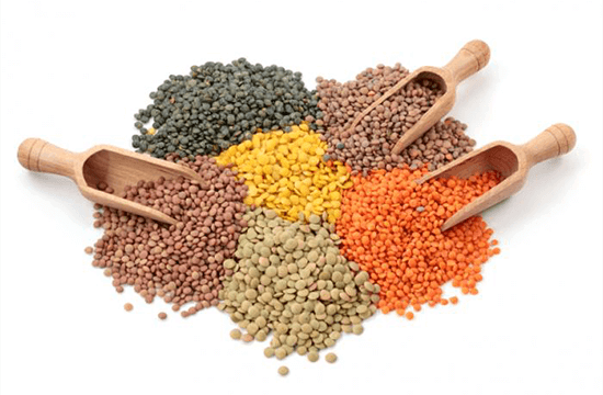 different kinds of lentils