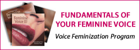 shopbanner-voicefem