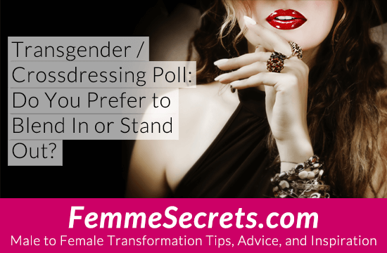 Transgender / Crossdressing Poll: Do You Prefer to Blend In or Stand Out?