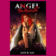 angel assasin book